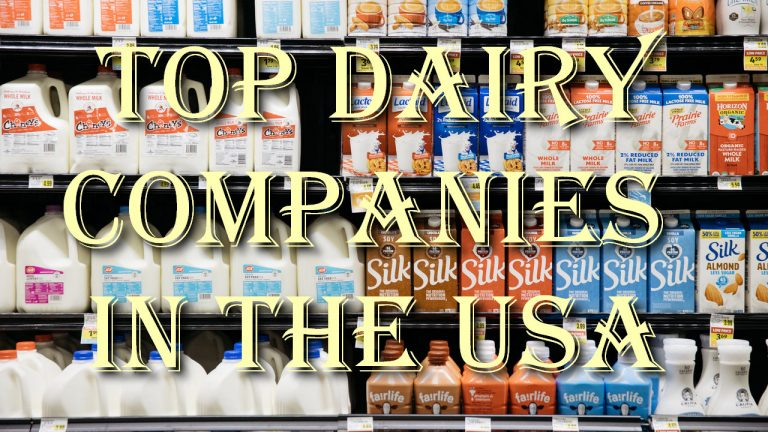 Top Dairy Companies in the USA
